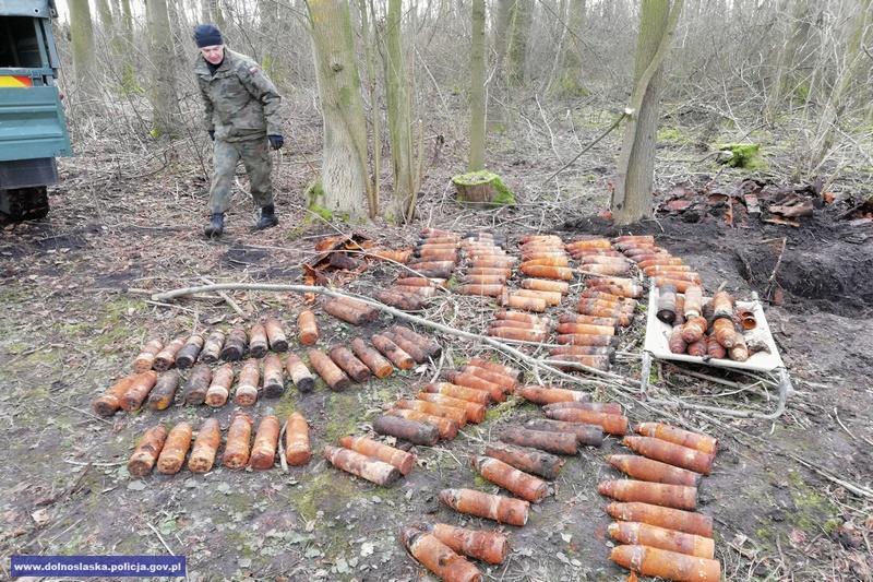 Odnaleźli rakiety podczas wycinki drzew wlesie